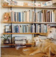 Baloo and Trudy, Forestville, Jan 1980